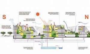 Singapore University Of Technology And Design Master Plan