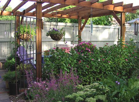 plants for a pergola 3 plant options for a patio pergola