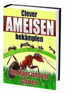 Ameisen Bekämpfen Im Garten : clever ameisen bek mpfen im haus und im garten runterladen ~ Frokenaadalensverden.com Haus und Dekorationen