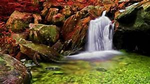 Autumn, Falls, Wide, Wallpaper, 587548, Wallpapers13, Com