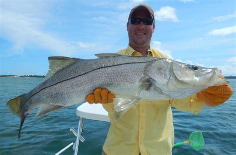snook fishing miami shark david key