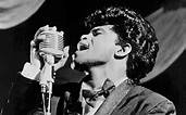 James Brown: too much craziness for one film - Telegraph