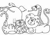 Zoo Coloring Pages Animal Animals Printable Getcolorings sketch template