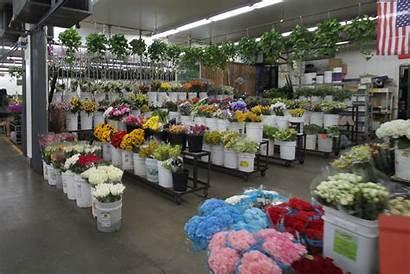 Flower Market Wholesale Floral Angeles Los District