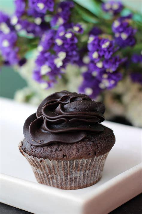 chocolate muffin  chocolate syrup  stock photo