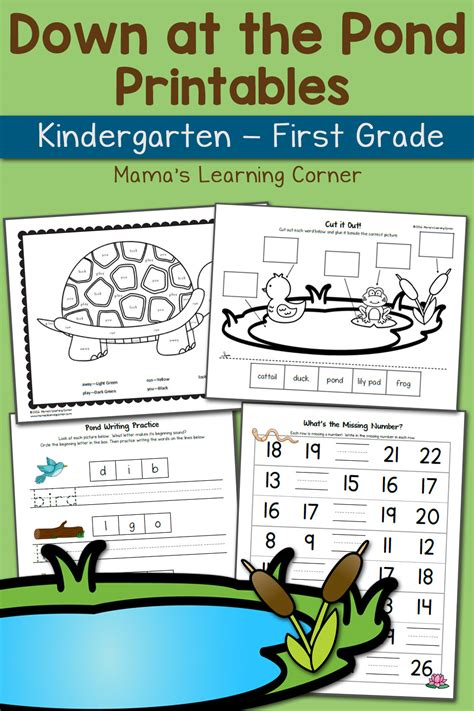pond worksheets  kindergarten   grade updated