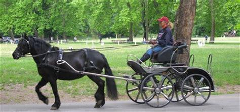 carrozze per cavalli usate comune di parma notizie