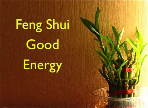Feng Shui Objects In The House That Will Protect You From