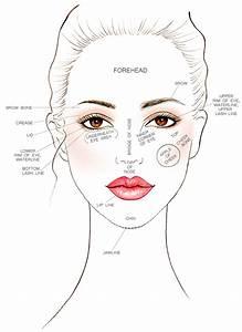 Female Face Chart For Makeup Artists - Mugeek Vidalondon