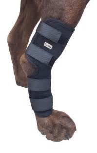 Dog Canine Rear Leg Hock Joint Wrap Protects Wounds as they Heal Compression Brace Heals and Prevents Injuries and Sprains Helps with Loss of Stability caused by Arthritis