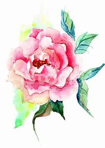 Beautiful Roses Flowers, Watercolor Painting Stock Vector ...