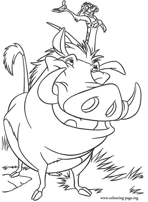 lion king timon  pumbaa coloring page