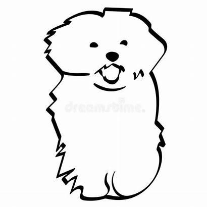 Maltese Vector Dog Icon Silhouette Outline Eps