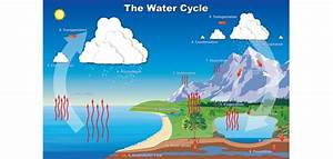 Water Cycle