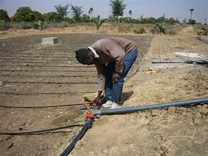 Système D Arrosage Goutte À Goutte : tuyau d 39 irrigation goutte a goutte ~ Melissatoandfro.com Idées de Décoration