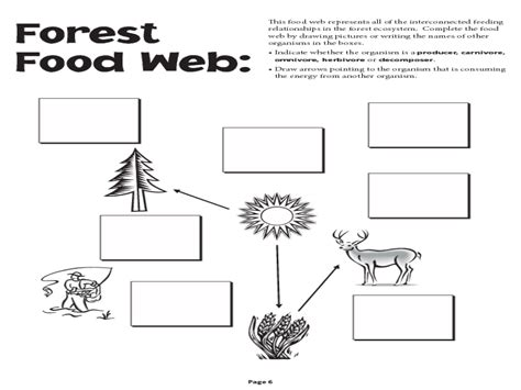 Complete The Food Chain Worksheet Worksheets For All  Download And Share Worksheets  Free On
