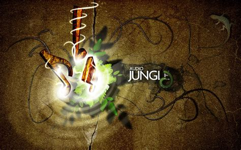 high definition photo  wallpapers wallpapers  jungle