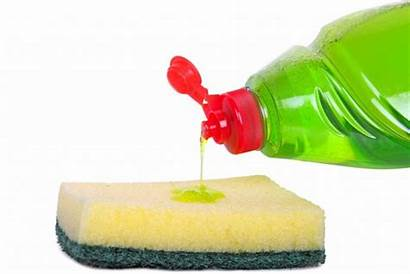 Liquid Dishwashing Weed Uses Soap Dish Weeds