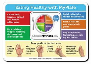 Myplate Eating Healthy Magnet