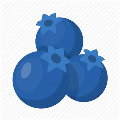 Berry Blueberries Icon Berries Organic Healthy Emoji