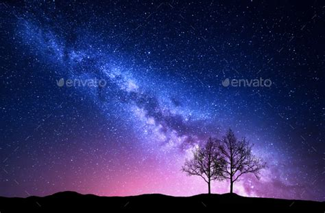 Starry Sky With Pink Milky Way Trees Night Landscape