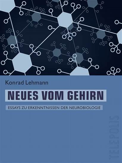 Gehirn Neues Vom Telepolis Ebook Lehmann Heise