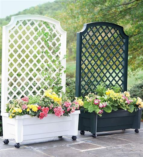 Movable Trellis by How To Build A Movable Trellis Wall Search Min