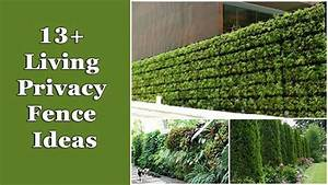 13+ Living Privacy Fences Ideas - Home and Gardening Ideas