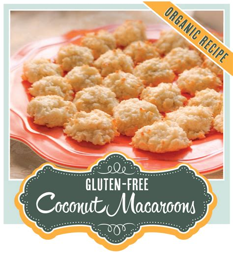 gluten free macaroons organically made coconut macaroons organic gluten free
