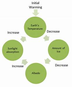 Biology Positive Feedback Loop Diagram - Wiring Diagram ...