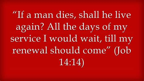 quotes  life  death bible image quotes