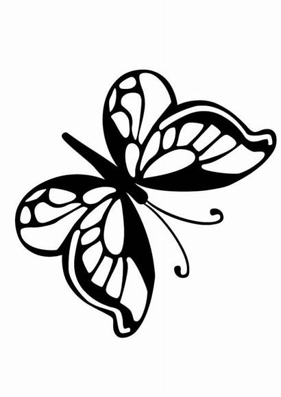 Butterfly Coloring Outline Pages Clipart Insect Simple