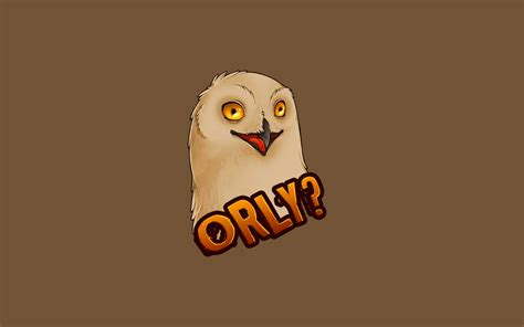 Meme Orly - download meme orly wallpaper 1680x1050 wallpoper 408399