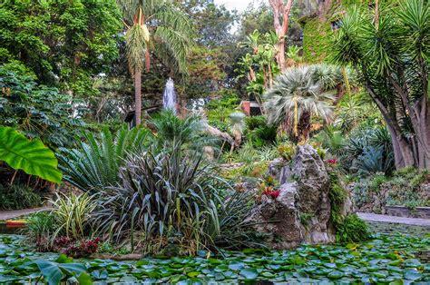 Botanischer Garten Ischia by Die Italienische Insel Ischia Im Golf Neapel Urlaubsguru