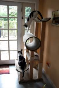 how to build a cat tower make a cat condo the diy adventures