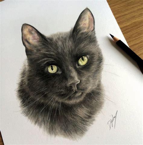 incredible animal pencil drawings  british artist