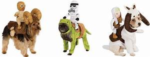 star wars pets may the fur be with you