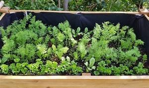 Hochbeet Bepflanzen Im 1 Jahr : hochbeet bepflanzen mit kr utern so schaffen sie eine duftende oase ~ Frokenaadalensverden.com Haus und Dekorationen