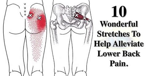 The best ways to lower back and hip stretches for pain get it here