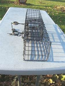 6 X 6 X 26 Mink  Weasel Wire Cubby  Trapping Double Your Kill