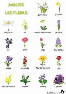 imagier a imprimer les fleurs cartes de nomenclature With affiche chambre bébé avec signification fleurs de bach