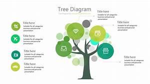Tree Diagram - 15