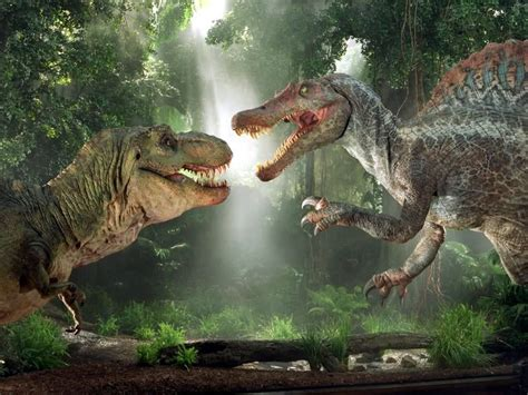 rex wallpapers fun animals wiki  pictures stories