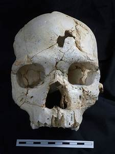 Spain: World's first murder victim was stabbed in the head ...