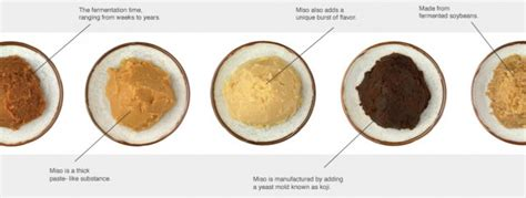 whats miso home made miso your sushi chef s blog