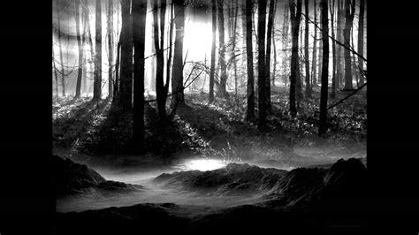 musica de la noche en la selva amazonica youtube