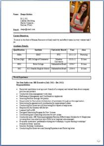 professional resume format for engineering freshers resume pdf storekeeper resume format