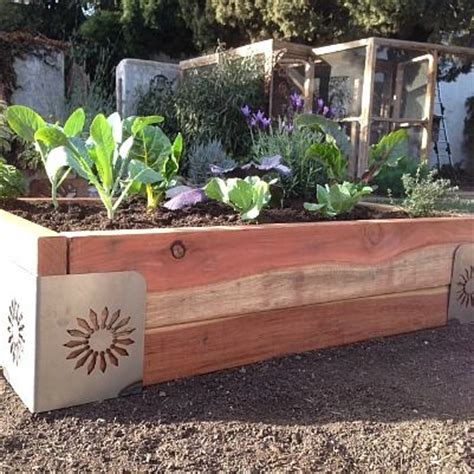 redwood raised garden beds raised bed sunflower design m brace 174 using 2x4 and 2x6