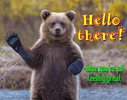 Hope Feeling Re Hi Youre Card 123greetings
