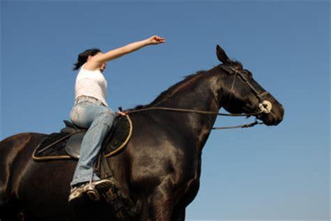 muskelaufbau beim pferd  trainieren sie richtig